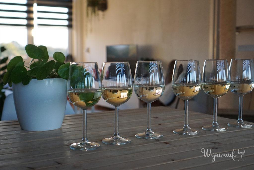 Alcoholvrije wijn testen