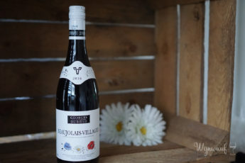 Review Beaujolais Albert Heijn