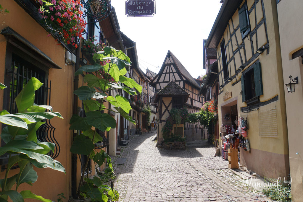 Eguisheim wijn Elzas