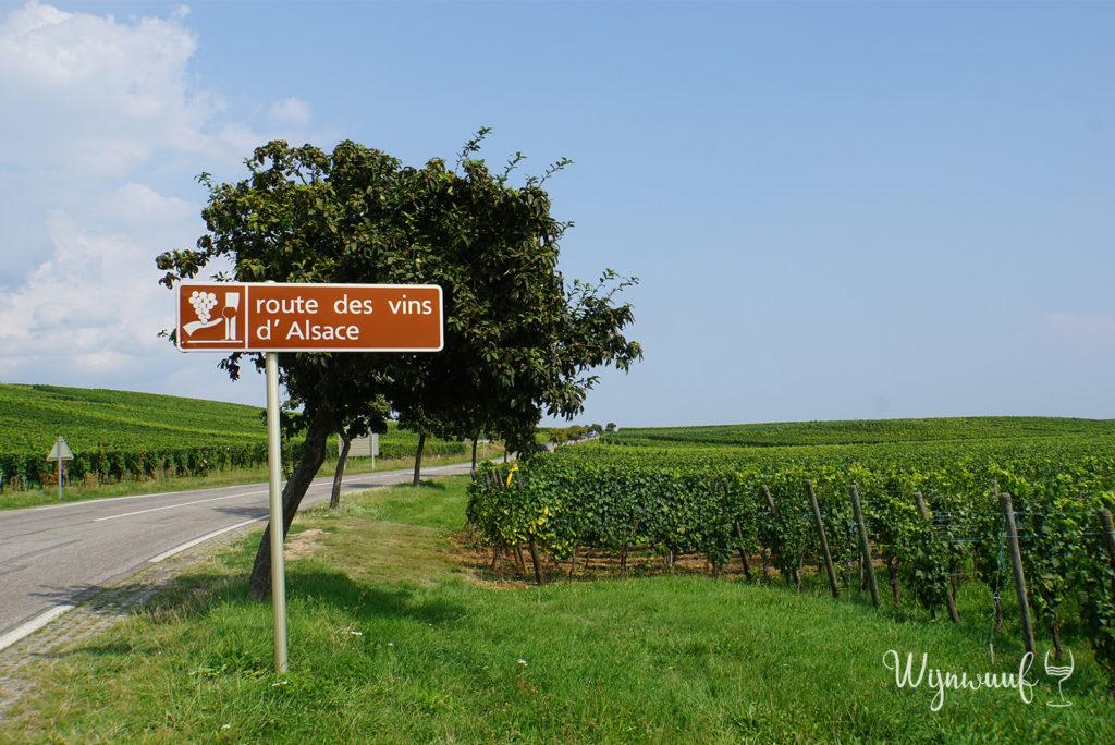 Route des vins Elzas